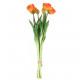 Tulips Bund